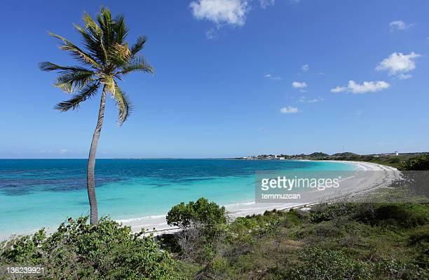 serie de playa - isla de antigua fotografías e imágenes de stock