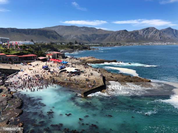 beach shot of people in hermanus during the whale festival cape town south africa - western cape province stock pictures, royalty-free photos & images