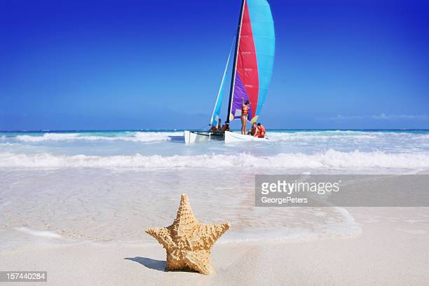 beach, starfish and sailboat - cancun stock pictures, royalty-free photos & images