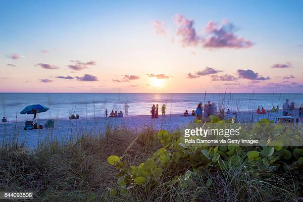 beach sunset with a pristine and idyllic beach in naples, florida, usa - light effect stock photos and pictures
