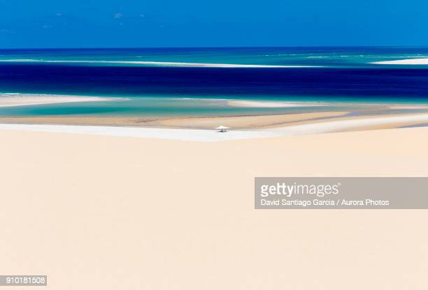 beach tent in middle of sandy coastal beach of bazaruto island, mozambique - モザンビーク ストックフォトと画像