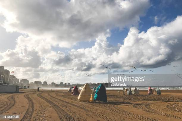 Beach tents on a windy day
