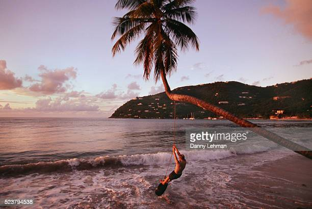 beach tire swing at cane garden bay on tortola - cane garden bay stock pictures, royalty-free photos & images