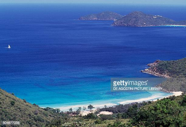Beach Tortola Island British Virgin Islands British Overseas Territory United Kingdom