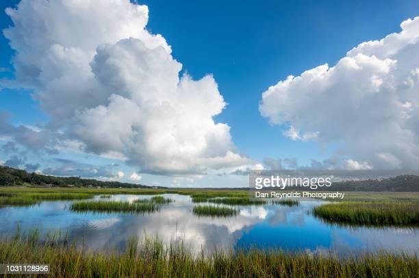 Beach Tropical Wetlands Scenic Landscape