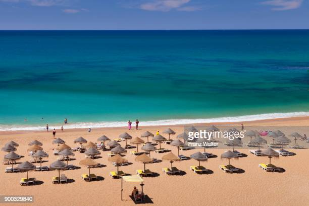 beach umbrellas with sunbeds on the sandy beach, praia do castelo beach, near albufeira, algarve, portugal - albufeira stock pictures, royalty-free photos & images