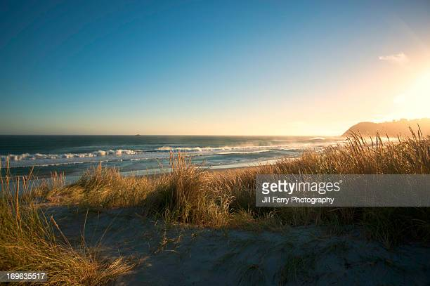 beach view - horizontal stock pictures, royalty-free photos & images