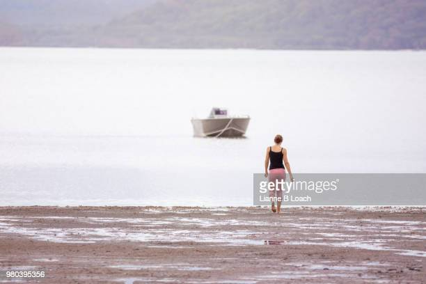 beach walk 1 - lianne loach stock pictures, royalty-free photos & images
