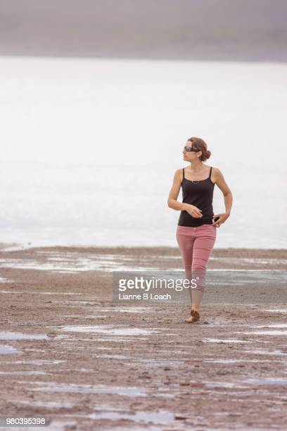 beach walk 18 - lianne loach stock pictures, royalty-free photos & images
