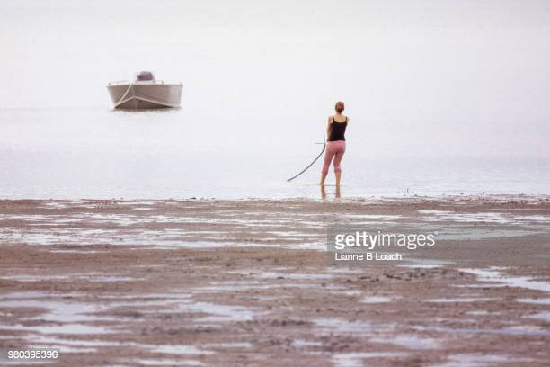 beach walk 5 - lianne loach stock pictures, royalty-free photos & images