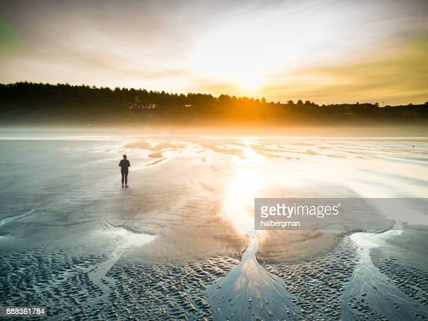 caminhada na praia ao nascer do sol - beleza natural natureza - fotografias e filmes do acervo