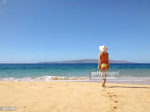 beach walk - hombre de espaldas playa fotografías e imágenes de stock