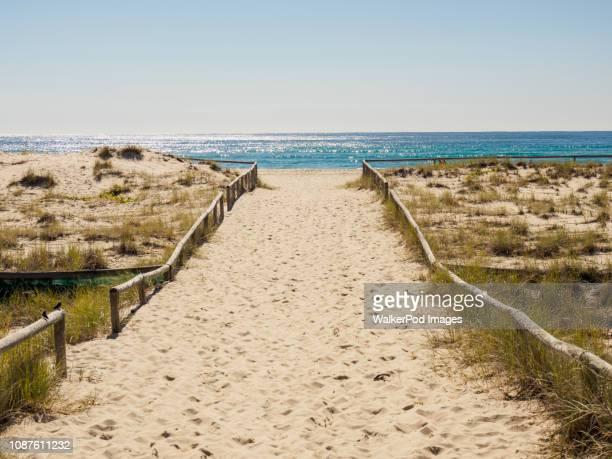 beach walkway in coolangatta, australia - gold coast stock pictures, royalty-free photos & images