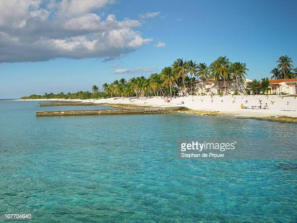beach with azure waters - stephan de prouw stock pictures, royalty-free photos & images