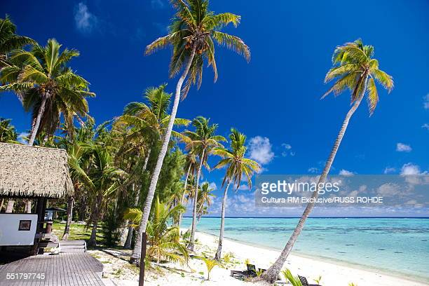 Beach with beach hut and palm trees, Aitutaki, Cook Islands