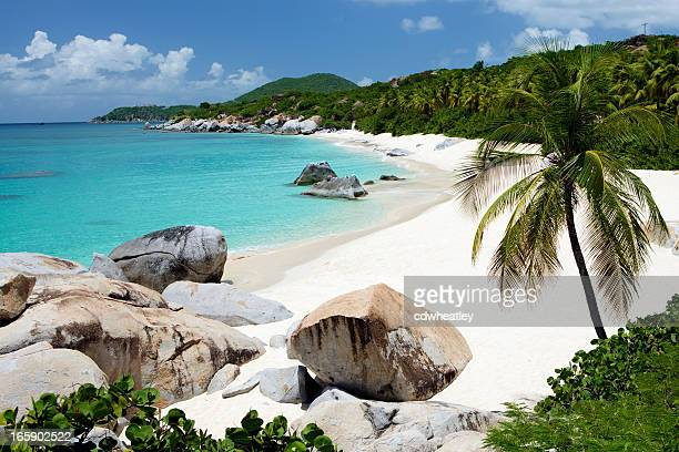 beach with boulders and palm trees in Virgin Gorda, BVI