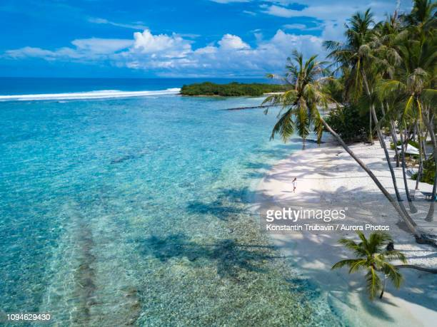 Beach with palm trees, Thulusdhoo, Male, Maldives