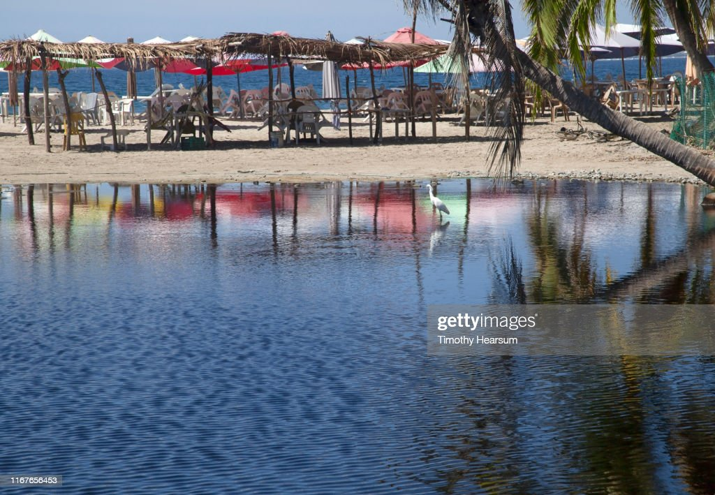 Beach with umbrellas, tables and chairs under ramadas, all reflected in a tide pool along with a snowy egret; Tenacatita Bay, Costalegre, Jalisco, Mexico : Stock Photo