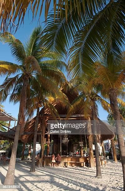 beach-bar under the palm trees on north beach - mujeres fotos stockfoto's en -beelden