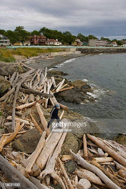 A beachcomber walks across the driftwood near the entrance to the harbour on July 2 2011 in Victoria British Columbia Canada This coastal city...
