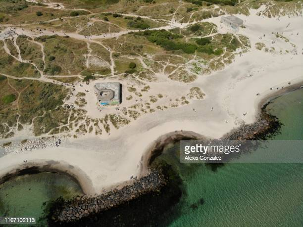 praias de grenen em skagen, dinamarca - esmeralda gonzalez - fotografias e filmes do acervo