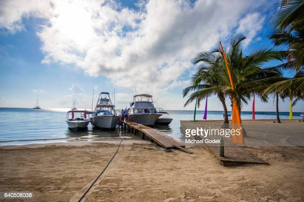 Beachfront scene with palm trees and boats docked on a pier