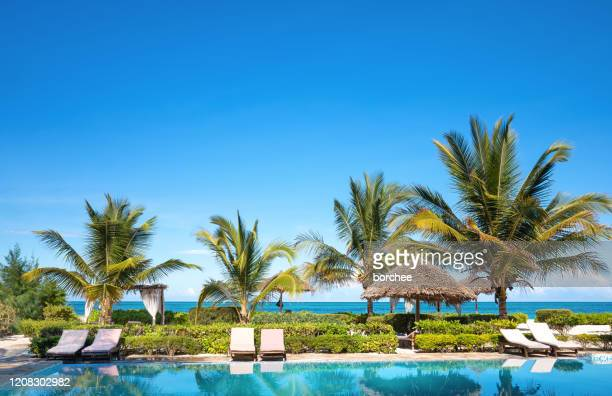 beachfront swimming pool - tourist resort stock pictures, royalty-free photos & images