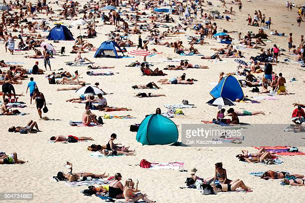 Beachgoers enjoy the hot weather at Coogee Beach on January 13 2016 in Sydney Australia Temperatures are expected to rise above 40 degrees in some...