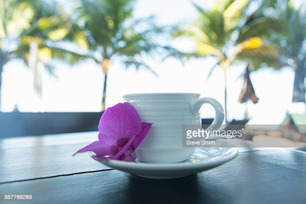 Beachside coffee cup with tropical flower clsoeup