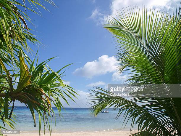 Beachside in Marshall Islands