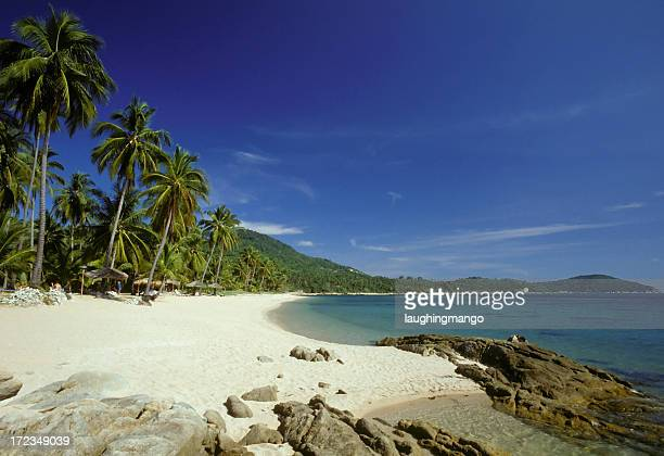 beachside landscape of chaweng beach koh samui thailand - ko samui stock photos and pictures