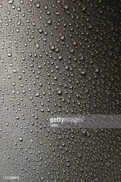 Perlen des Regen