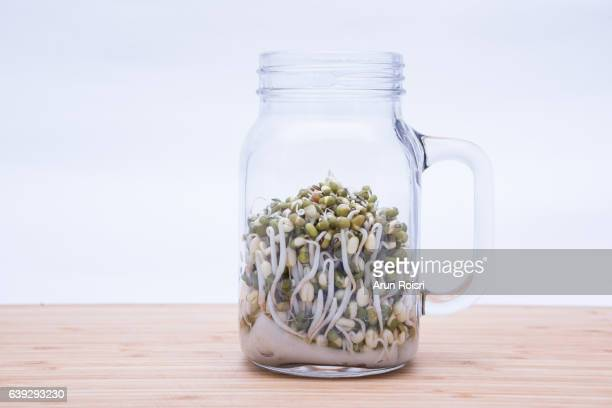 Bean sprouts in glass on wooden plate