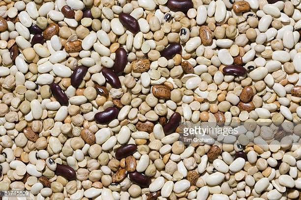 Beans and pulses London England United Kingdom