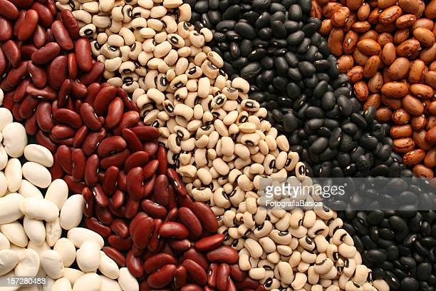 beans diagonals - cereal plant stock pictures, royalty-free photos & images