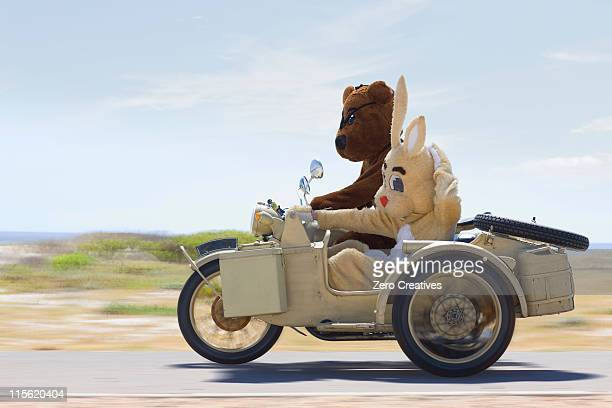 bear and bunny riding a motorbike - animal costume stock pictures, royalty-free photos & images