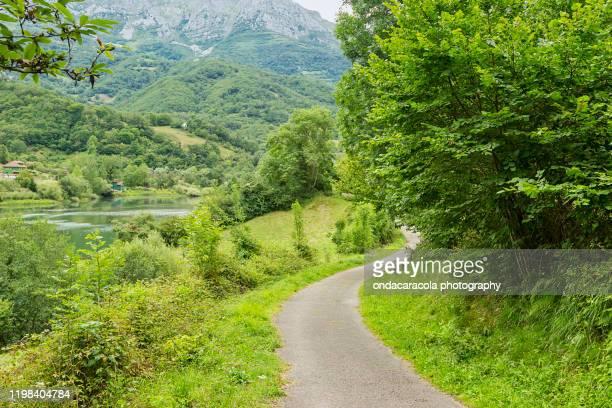 bear cycling route in asturias - principado de asturias fotografías e imágenes de stock