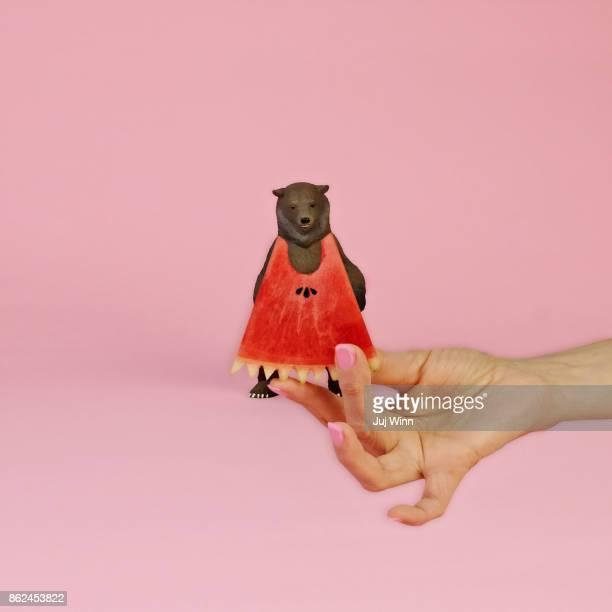 Bear in a Watermelon Dress