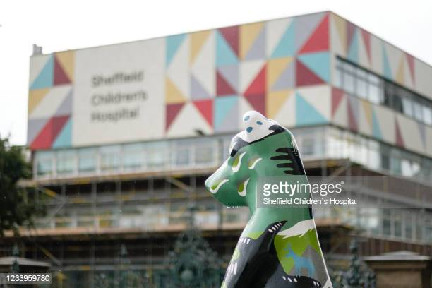 Bear on display as sixty fibreglass bears have descended across Sheffield to raise funds for a new Cancer and Leukaemia ward at Sheffield Children's...