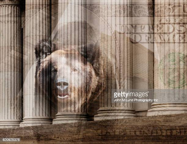 bear, one hundred dollar bill and pillars of ornate building - bear market stock pictures, royalty-free photos & images