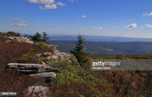 Bear Rocks mountain top at Dolly Sods wilderness, West Virginia, USA