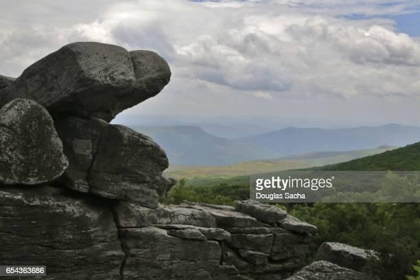 Bear Rocks Preserve, West Virginia, USA