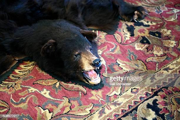 bear rug ( - bearskin rug imagens e fotografias de stock