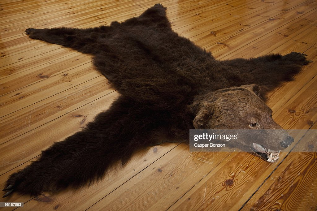 A bear skin rug on wooden floorboards : Stock Photo