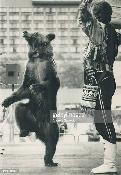 Bear trot Dancing bears like Knopa at the Moscow Circus get enough exercise outside their cages an Ontario Human Society inspector said yesterday