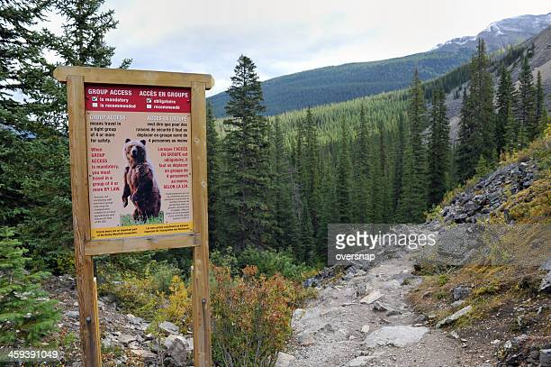 bear warning sign - bear tracks stock pictures, royalty-free photos & images
