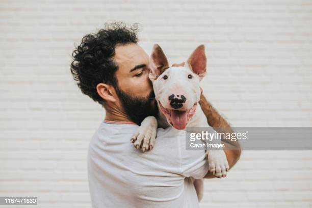 bearded man kissing a white bull terrier dog - bull terrier stock pictures, royalty-free photos & images