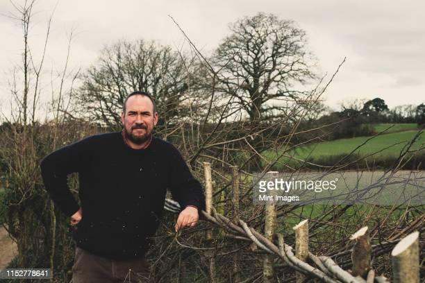 bearded man standing next to a newly built traditional hedge, smiling at camera. - cultura británica fotografías e imágenes de stock