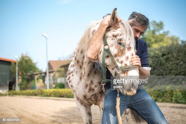 bearded veterinarian stretching neck of spotted horse - osteopath stock photos and pictures