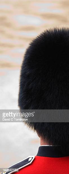 bearskin, trooping the colour, london, england - bearskin hat stock pictures, royalty-free photos & images